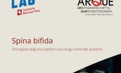 Titelbild Broschüre Türkisch